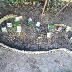 和風庭園に竹垣花壇